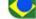 Idioma brasil